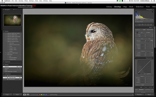 how to import work from photoshop to lightroom